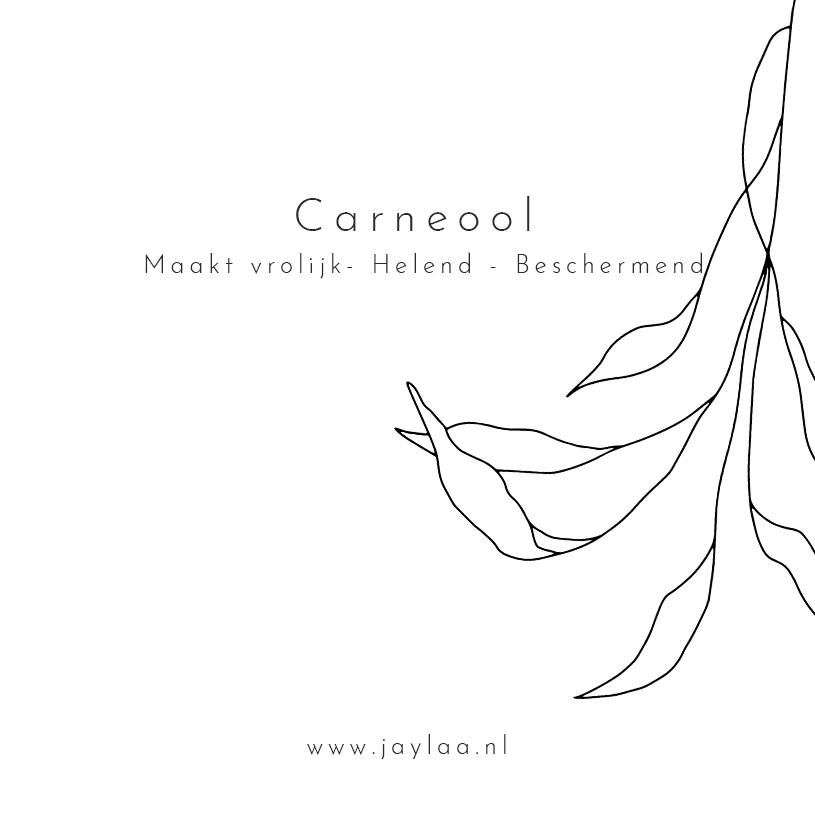 Carneool