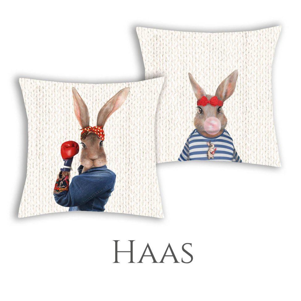 Kussens Haas
