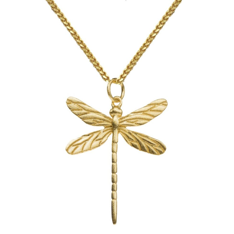 19. Hi Dragonfly G