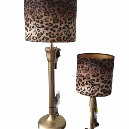 Lamp5 Li (2)