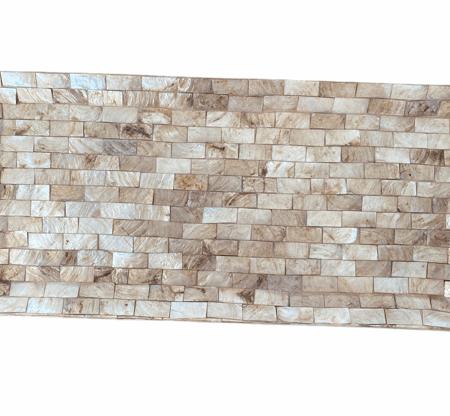 Plate Shell (2)