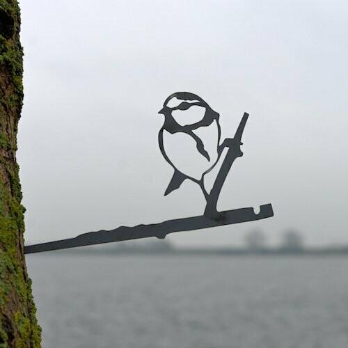 Pimpelmees Birdwise
