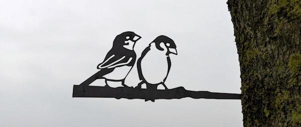 Huismus stelletje - Birdwise
