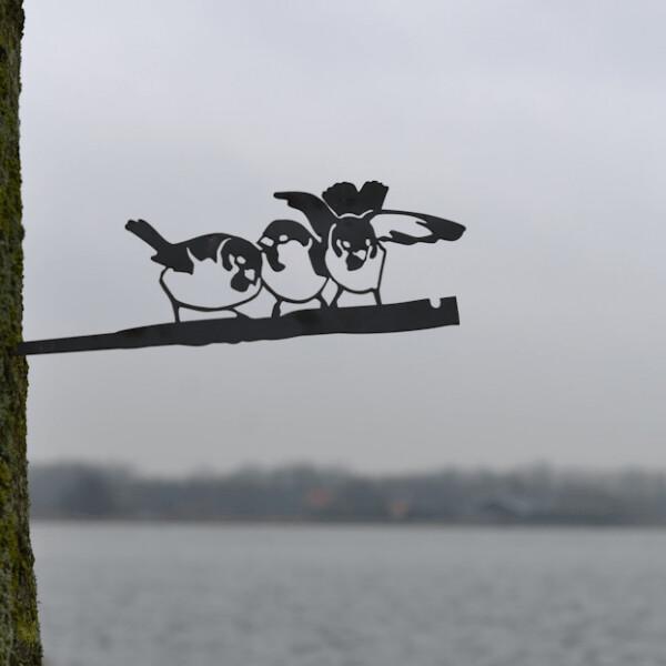 Huismusjes trio Birdwise